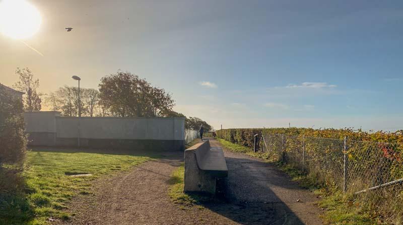 """På Landborsgpromenaden - """"sträckbänken"""" i morgonljus. Bilden tagen in mot centrum av Helsingborg (foto: Christer Strid)"""