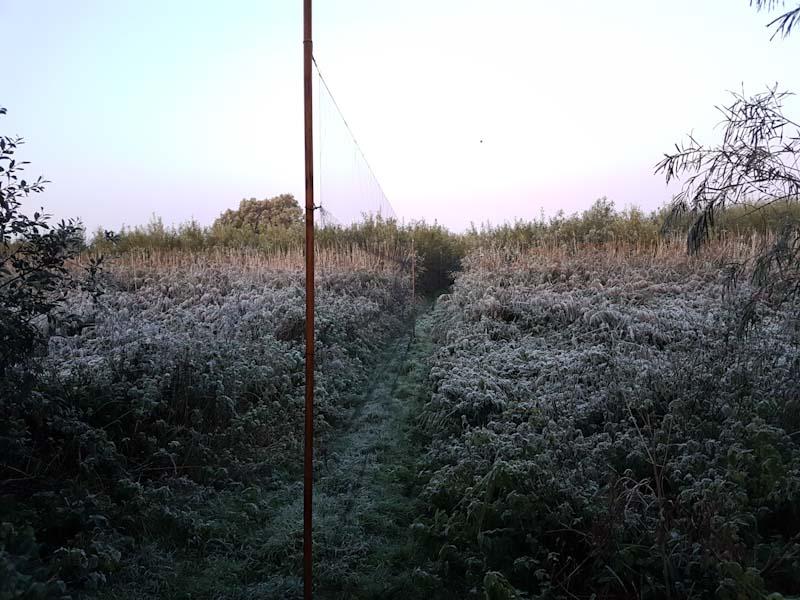 Frostnupet landskap - ingen syn vi är vana vid! Foto: Klas Rosenkvist
