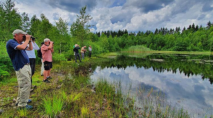 Trollsländeexkursion 2020, foto Totta Sandberg