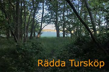 Skydda Tursköpsskogen
