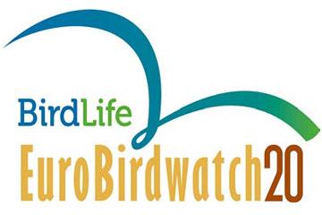 EuroBirdWatch 2020