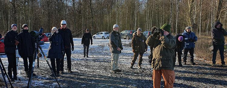Vinterfågelrunda 2021, foto Totta Sandberg