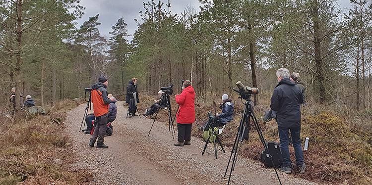 Orrexkursion till Långhultsmyren. Fota Totta Sandberg