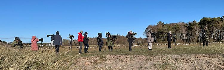 Måndagsexkursion till Grytskären. Foto Thomas Wallin