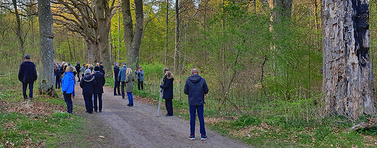 Måndagsexkursion till Svedberga kulle. Foto Totta Sandberg