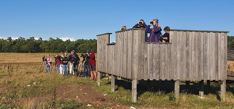 Måndagsexkursion till Farhult. Foto Totta Sandberg