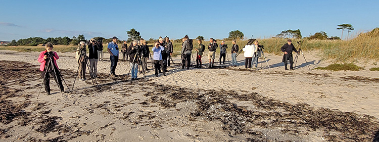 Måndagsexkursion till Ören i Strandbaden. Foto Micke Jönsson