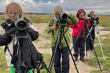 Måndagsexkursion till Vejbystrand. Foto Thomas Wallin