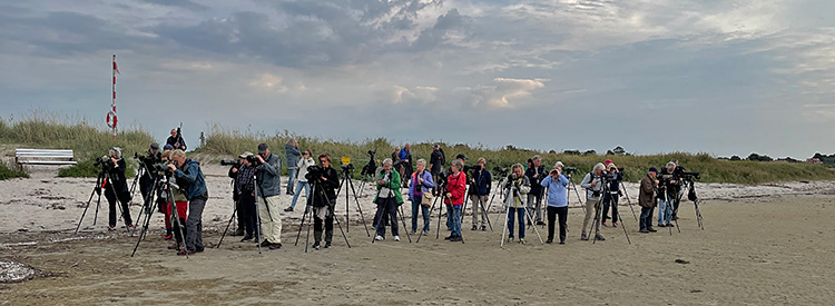 Måndagsexkursion till Sandön. Foto Thomas Wallin